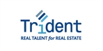 Trident International Associates. logo